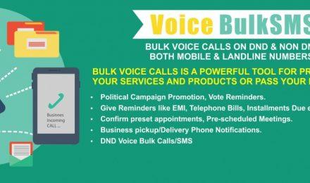 Bulk Voice Call Service provider
