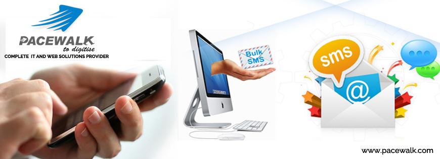 Importance Of Bulk SMS