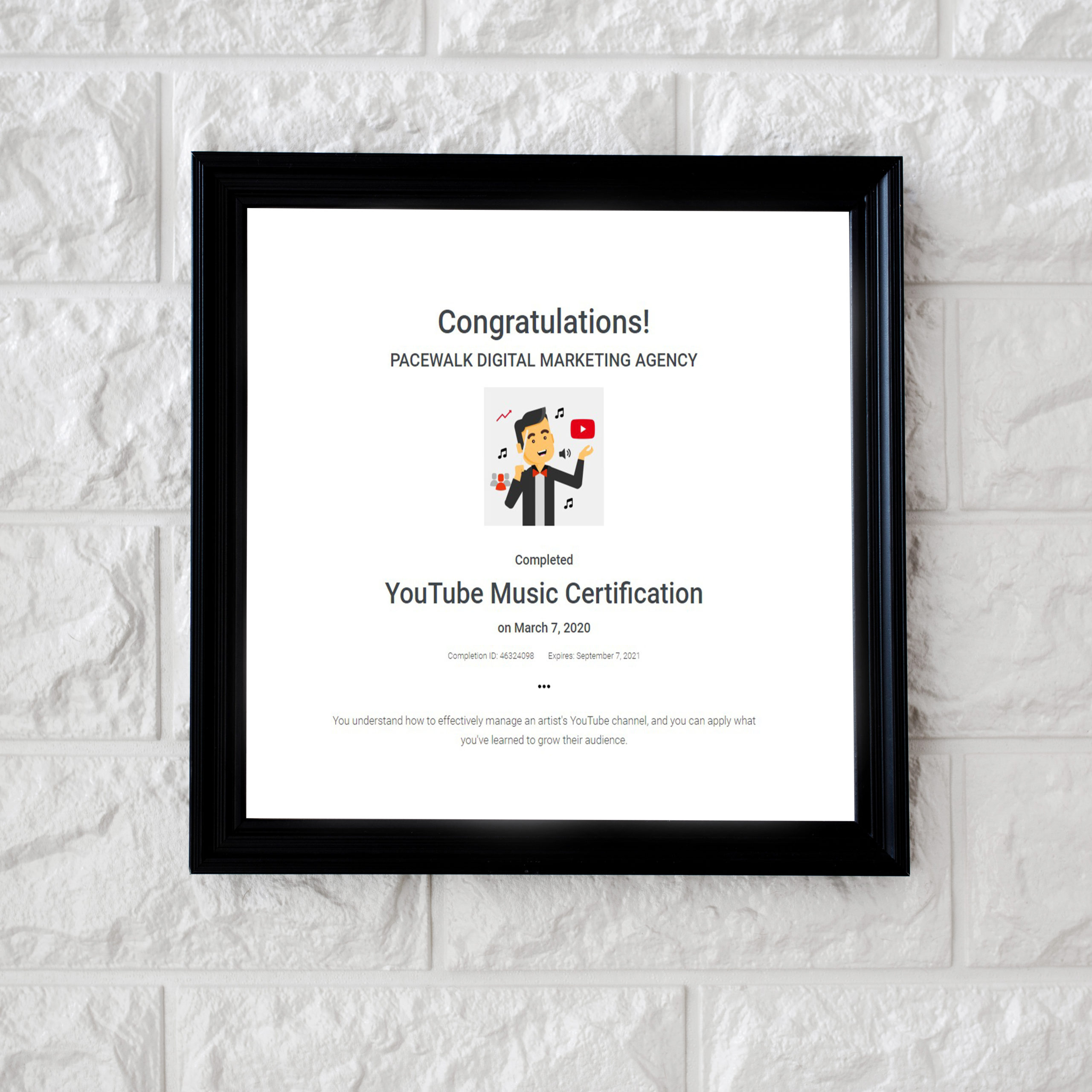 Youtube Certified Company in Chandigarh
