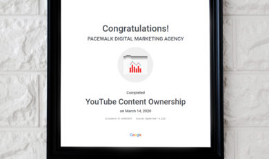 Youtube Ads Certified Company in Chandigarh