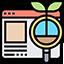 web-content-icon